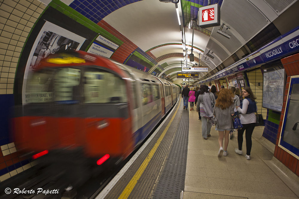 IMG_4634 by robpap