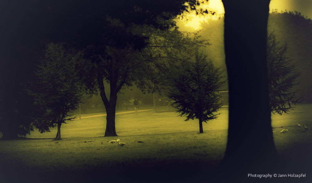 dusty mornin' by Photography_around_JANNHOLZAPFEL