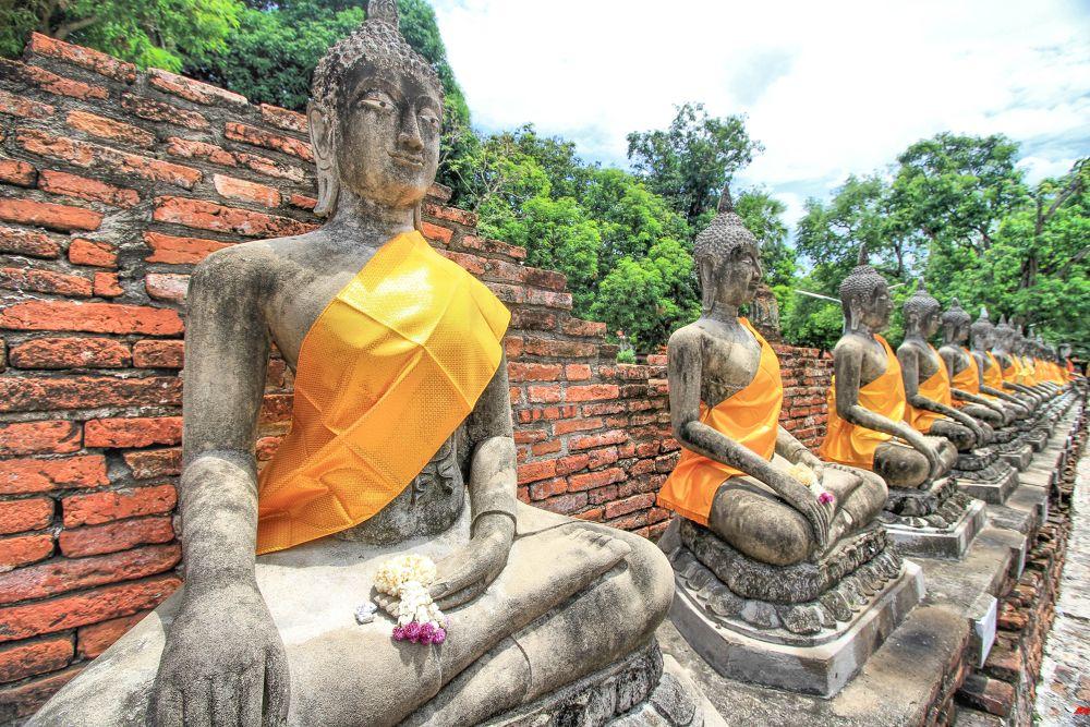 The Buddha's by Lloyd de Gruchy