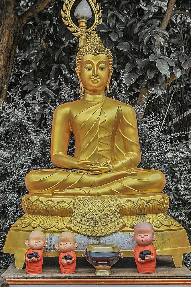 Photo in Random #buddha