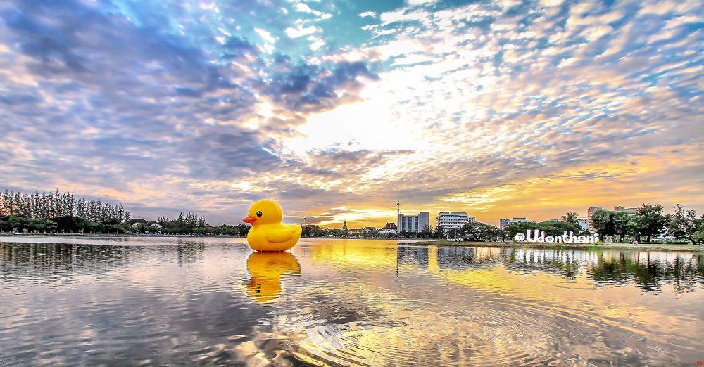 Big Duck by Lloyd de Gruchy