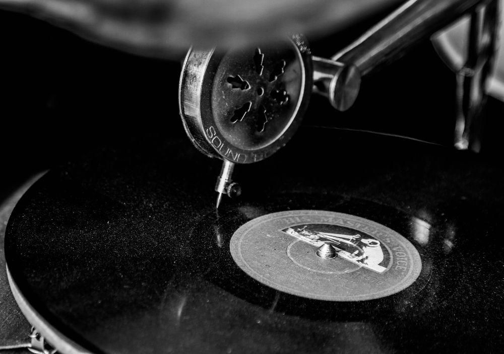 His Masters Voice by Lloyd de Gruchy