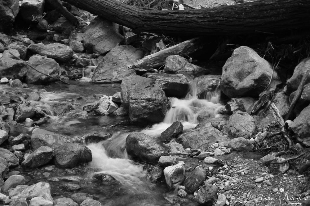 Stream by andrewbutterfield
