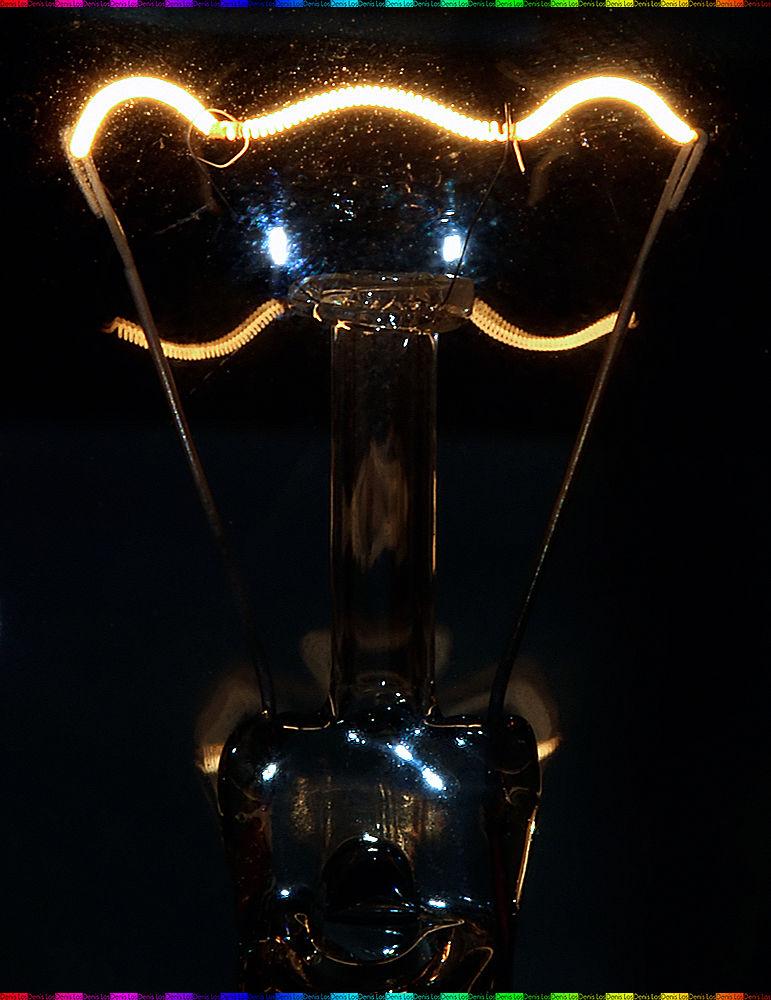 lightbulb by Denis Los