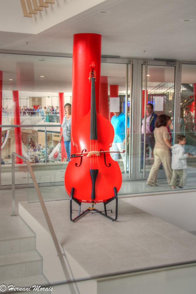 Cello by hernanimorais5