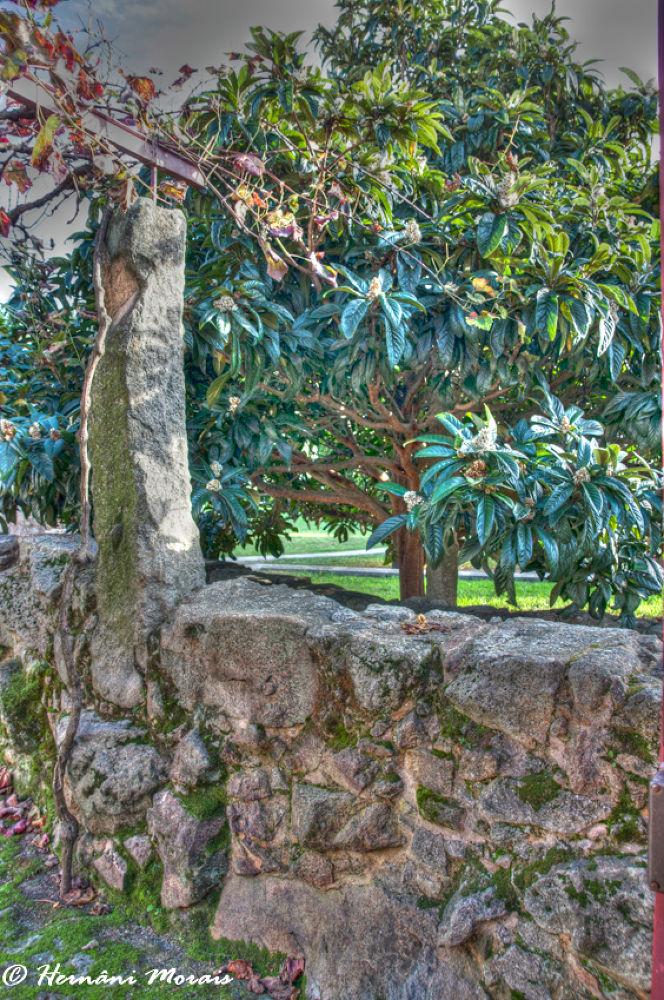 Porto City Park by hernanimorais5