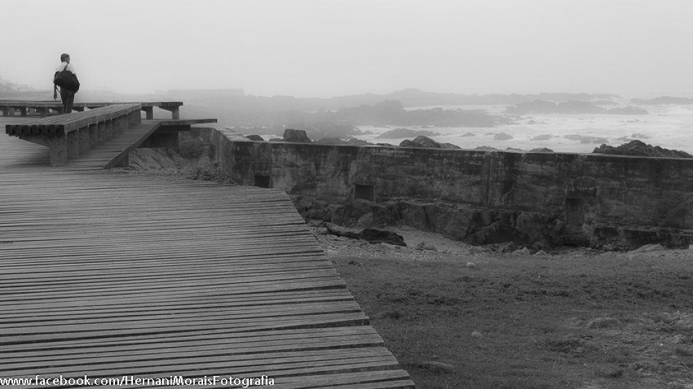 Some fog by hernanimorais5