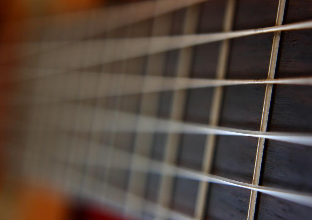 Strings & Frets by Alex Boros