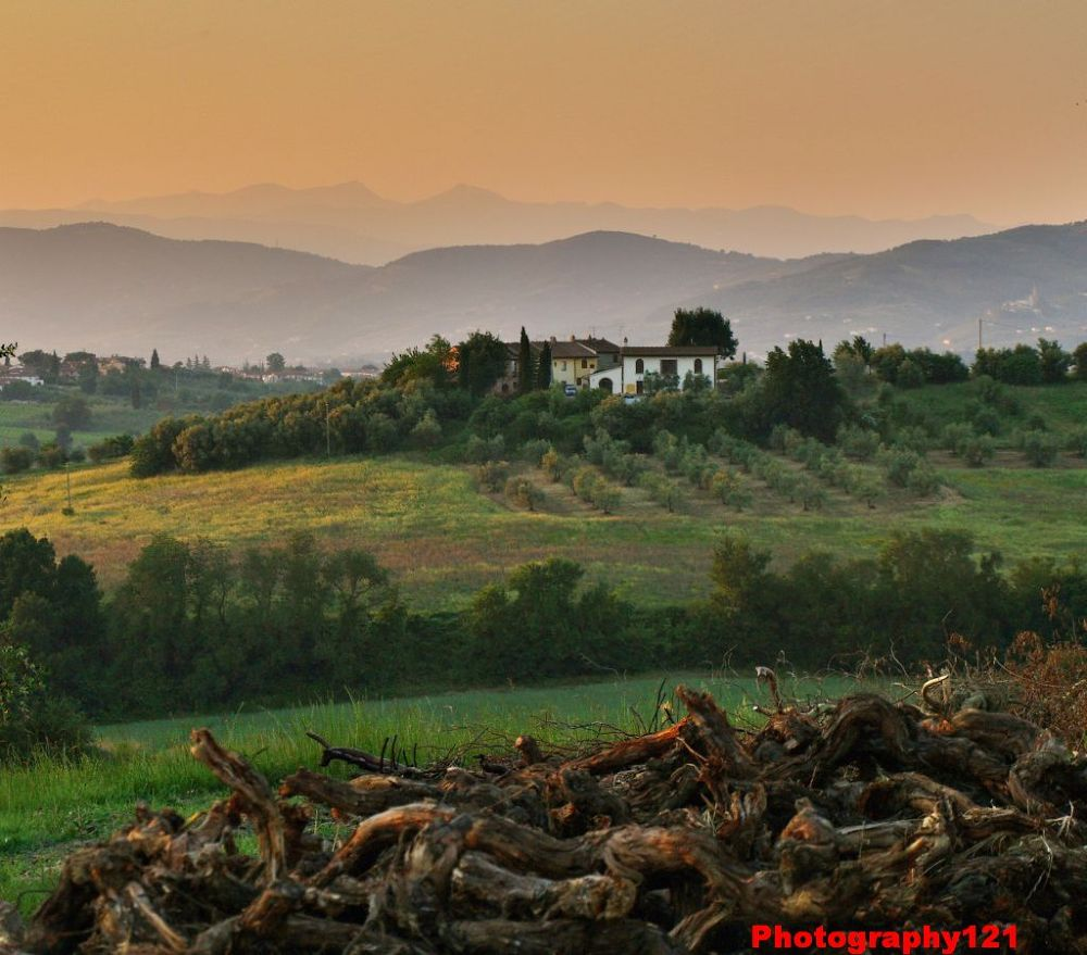 Toscana_Tuscany_Italy_low_res_photography121 by GuidedPhotographyWalks.co.uk