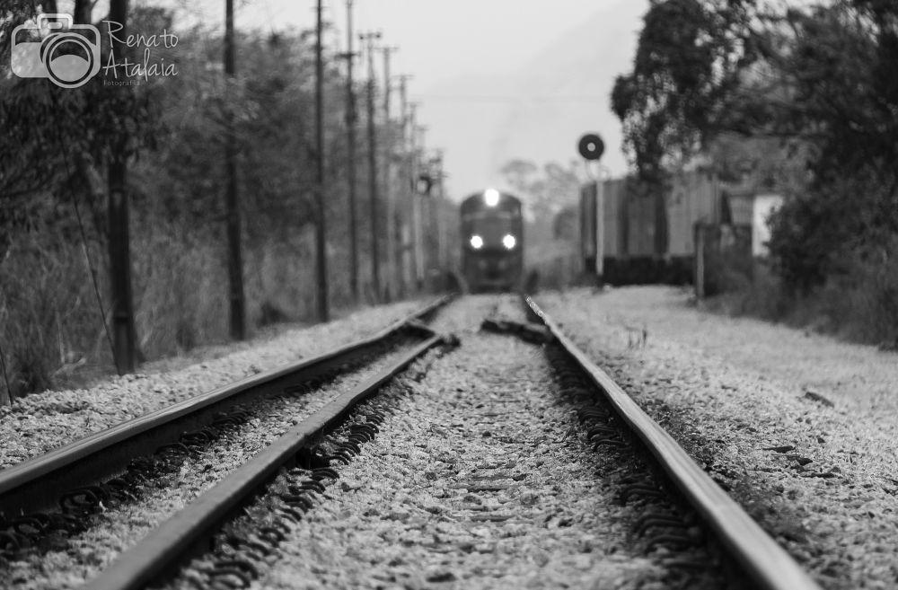 freight train by renatoatalaia
