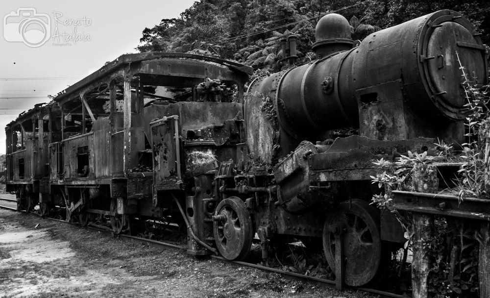 Train by renatoatalaia