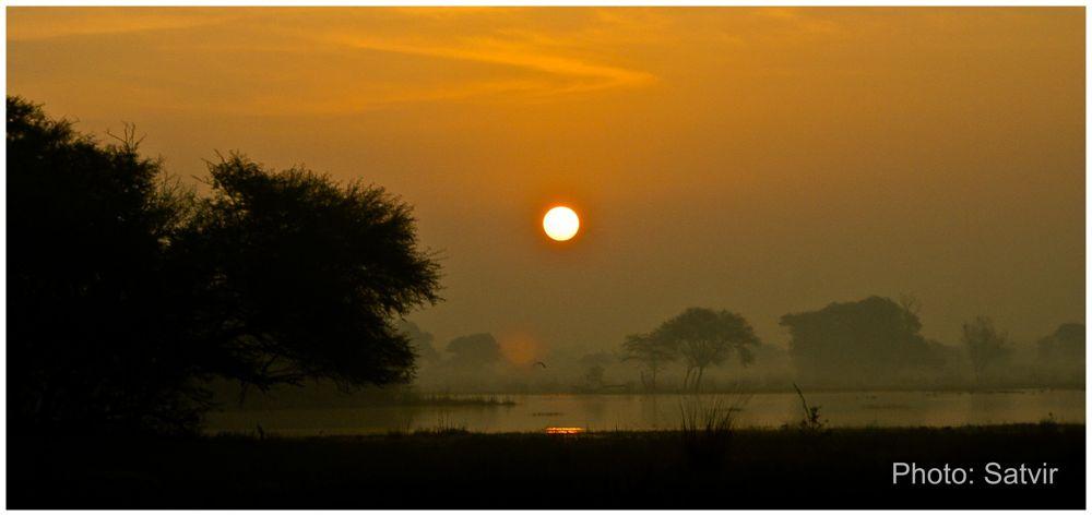 Sunrise by satvirmalhotra
