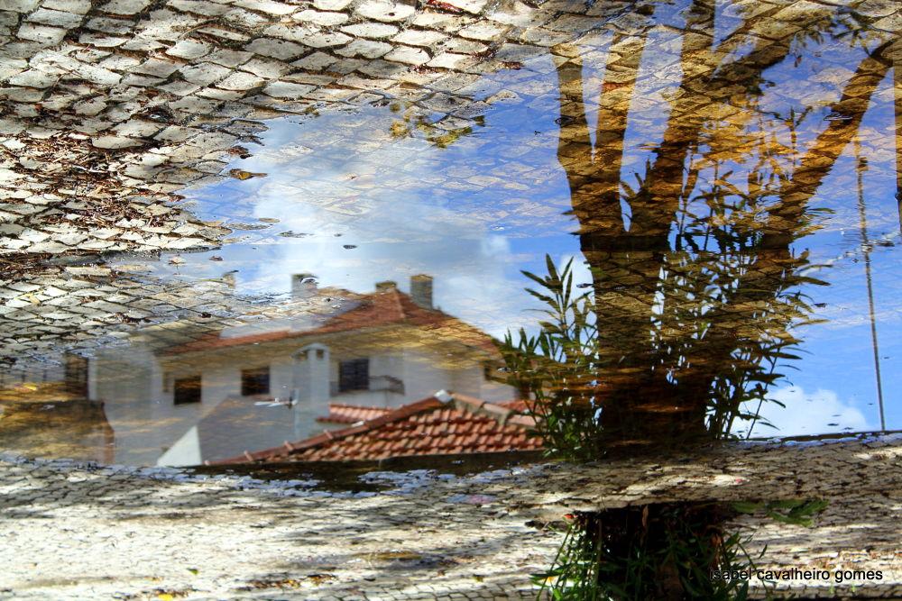 Untitled by isabel cavalheiro gomes