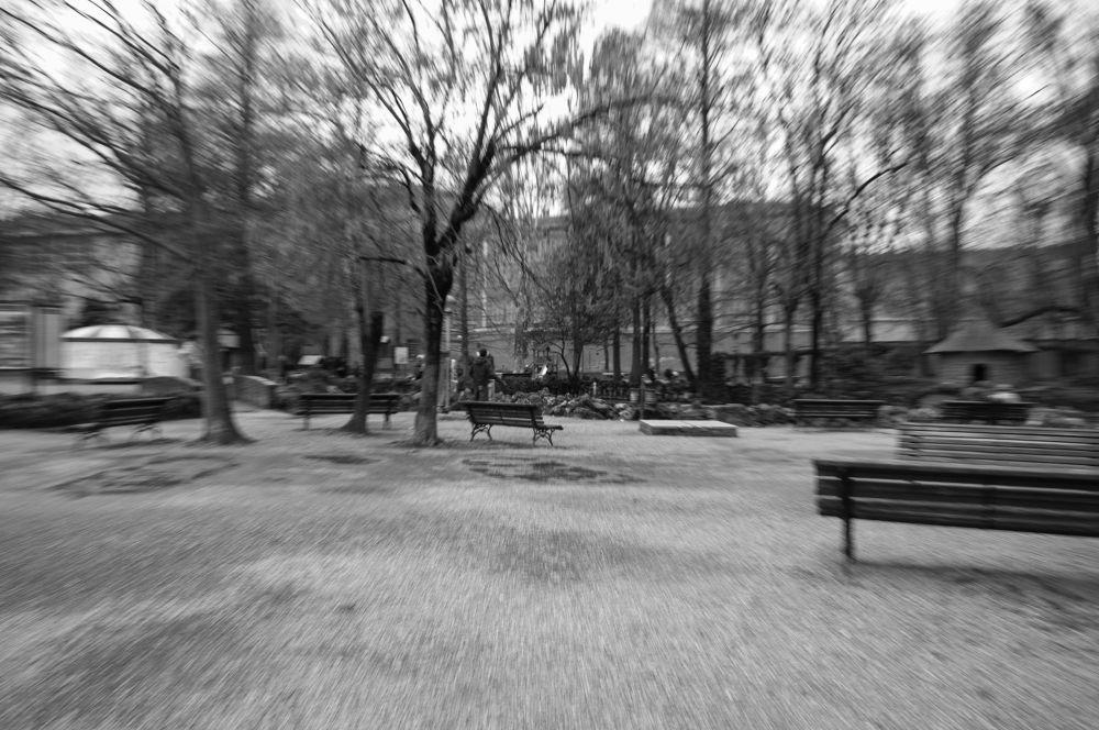 Photo in Random #modena #park