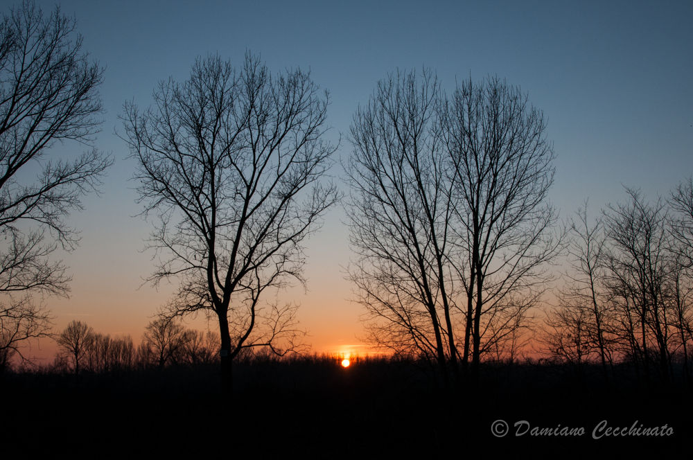 Photo in Landscape #sunset #padova #italy #nature #sunset