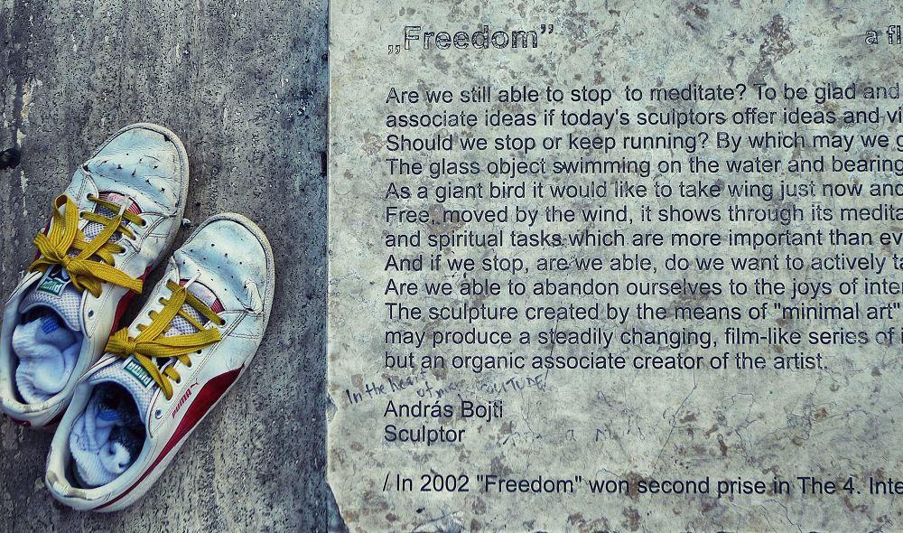 freedom by AlpaChino