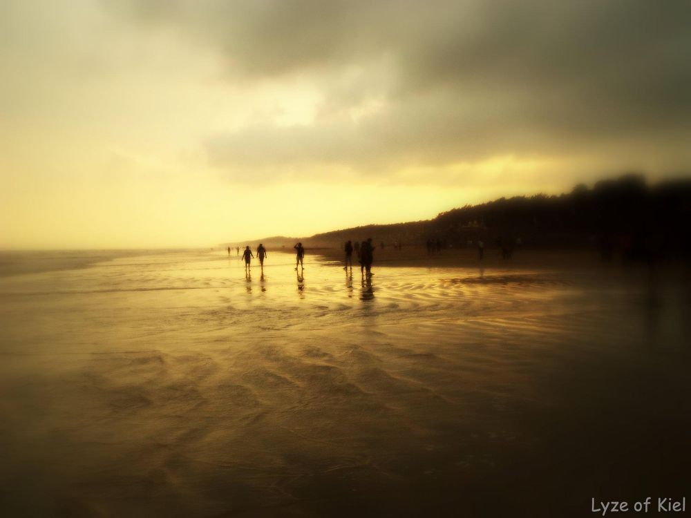 Beach Life by Neel