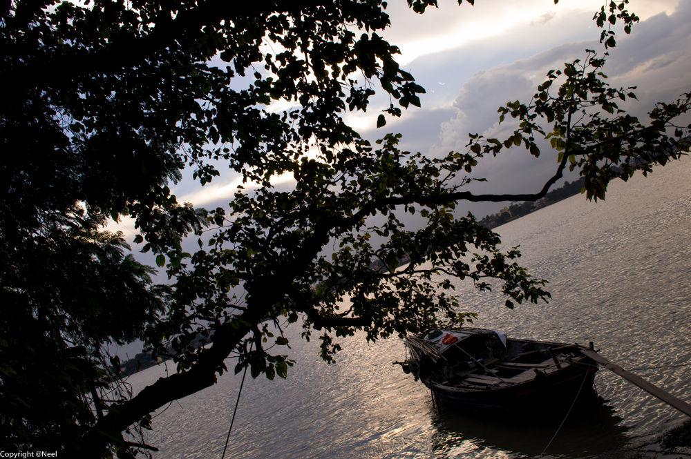 Boat by Neel