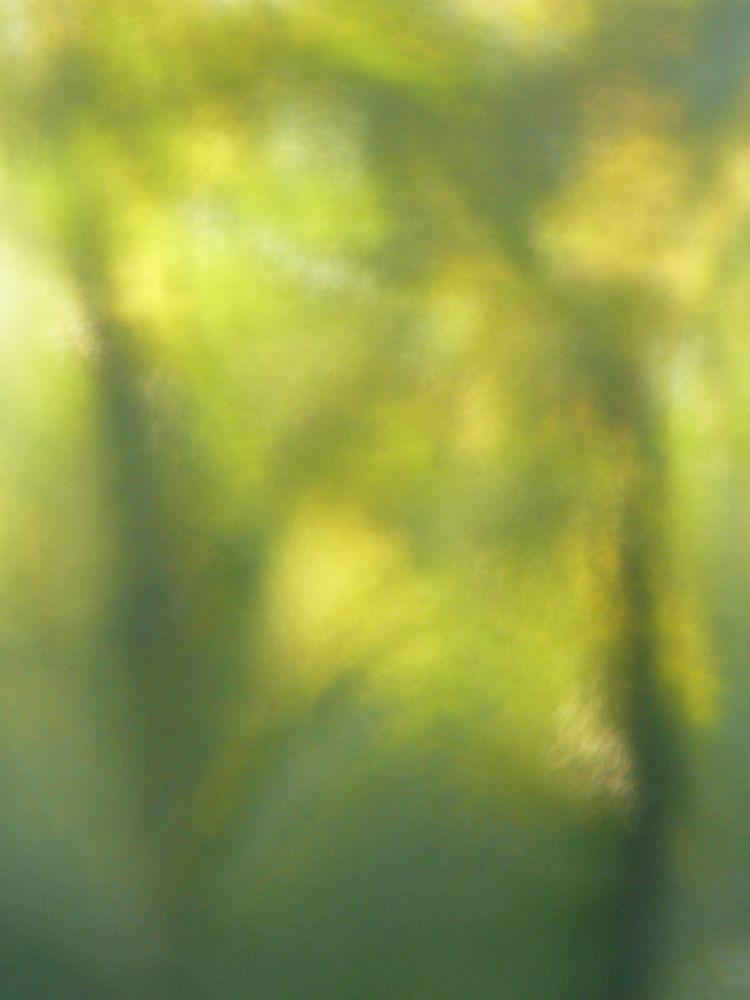 Impressionism (Trees) by geokorunov