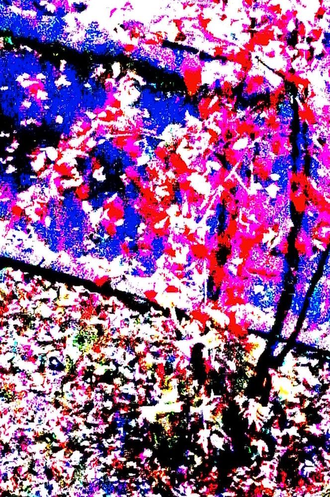 Autumn by geokorunov