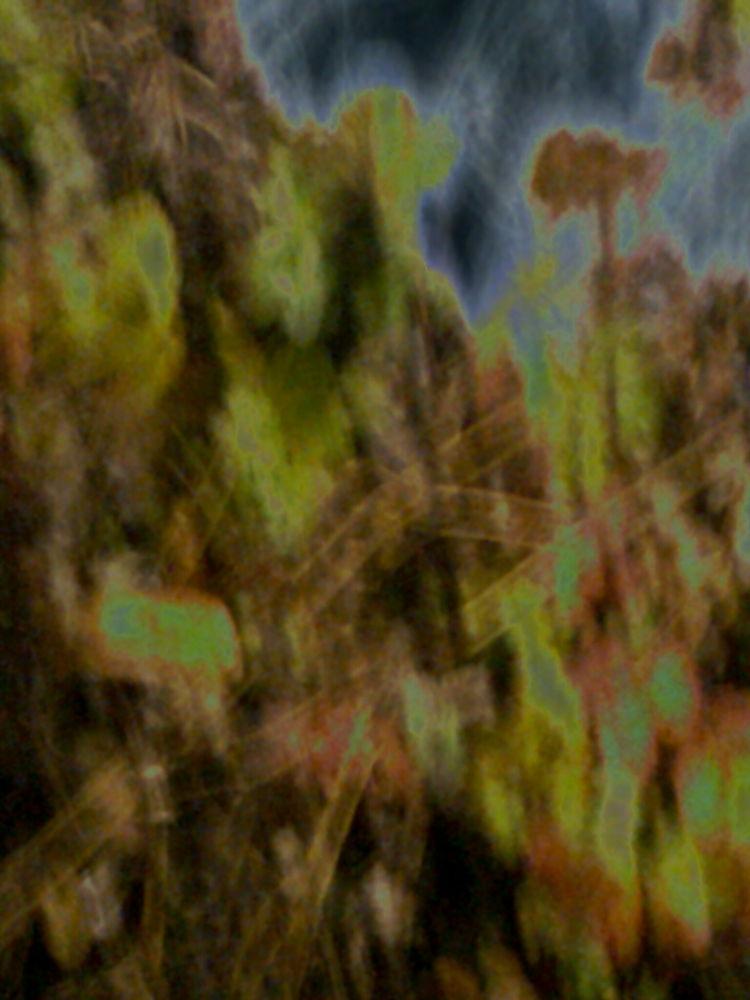 Autumn(Abstract) by geokorunov
