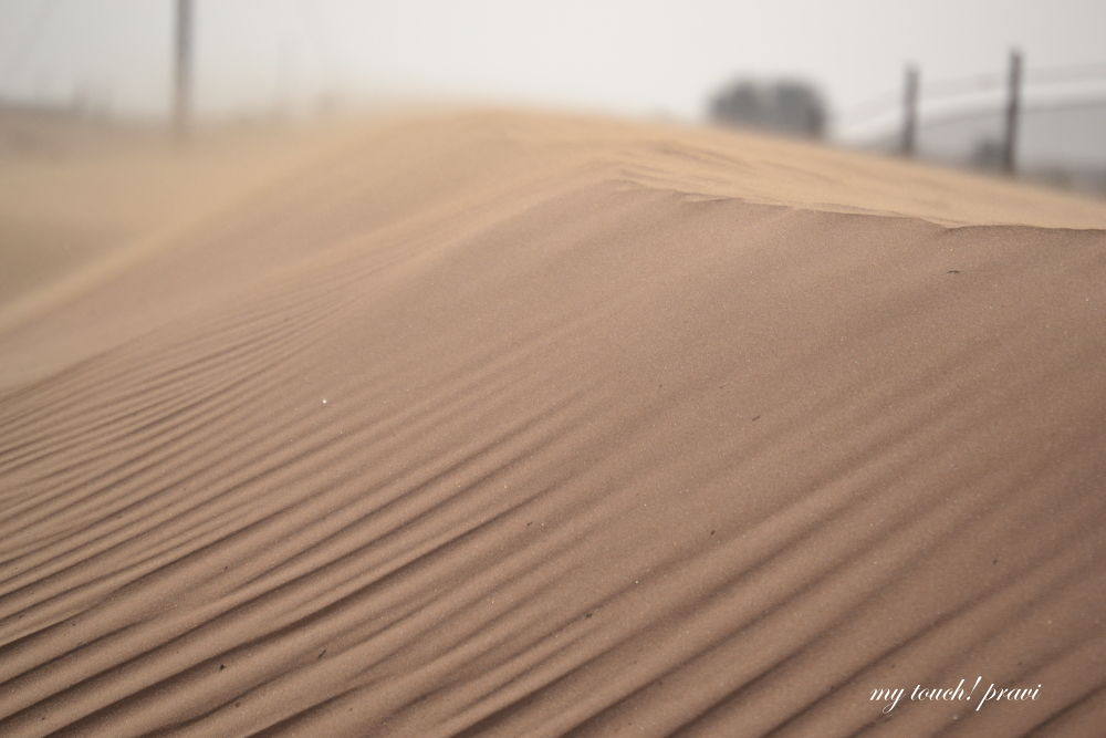 Desert  by praveenpnr