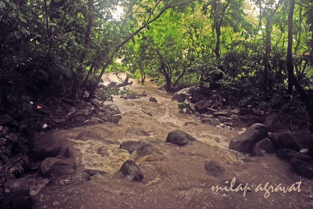 RAIN IN JUNAGADH GIRNAR by milapagravat