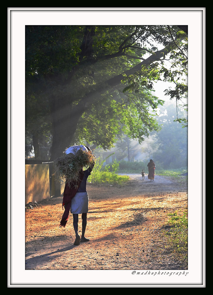 _CSC0027web by madhupayyanvellatinkara
