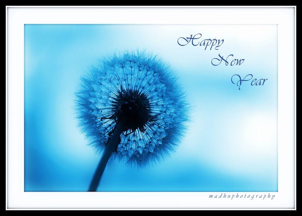 Happy New Year 2014 by madhupayyanvellatinkara