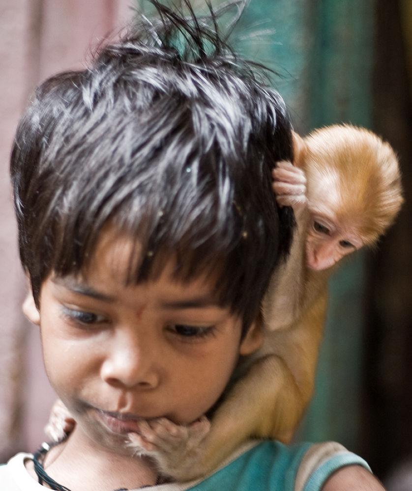 boy with monkey by santoshkpandey18