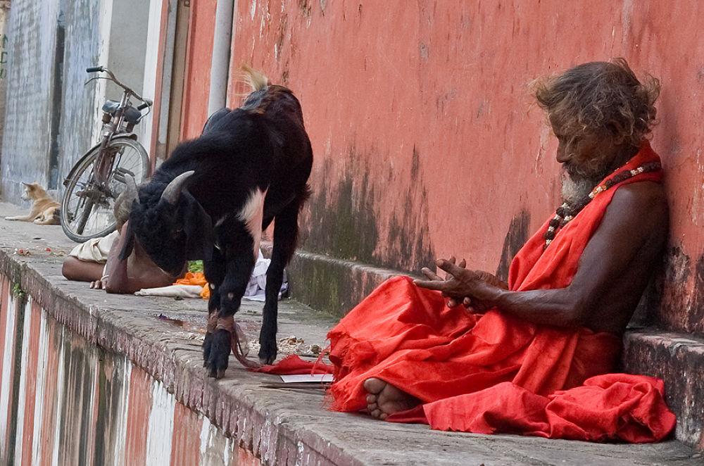 Photo in Street Photography #ypa2013 #varanasi #kashi #sadhu