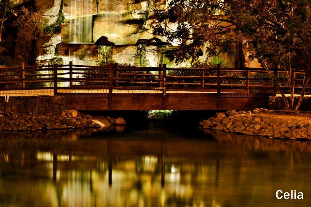 El Reflejo, del puente. by celiafernandez752