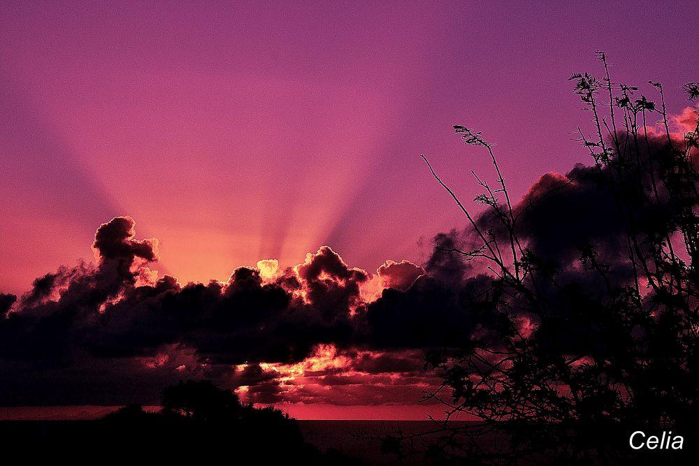 Luz del amanecer by celiafernandez752