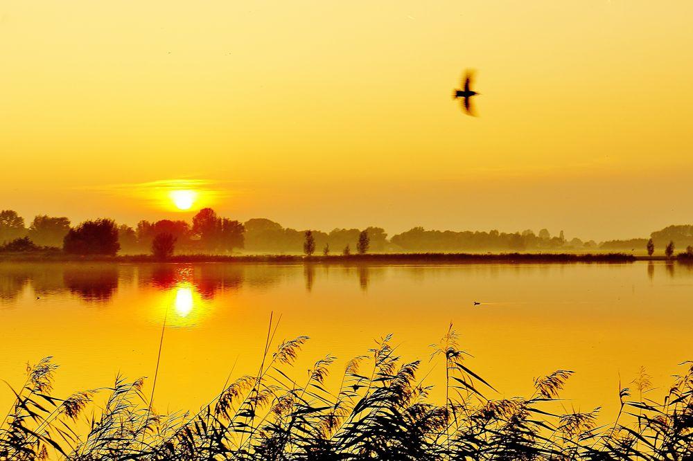 Sunset by Cassy Hoevenagel