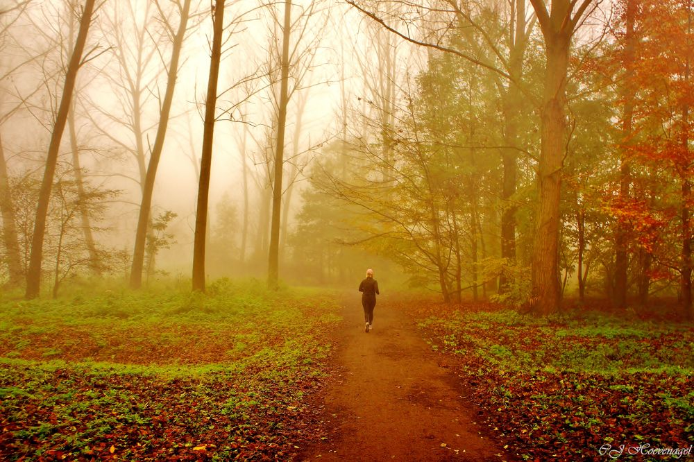 Running in the foggy day by Cassy Hoevenagel