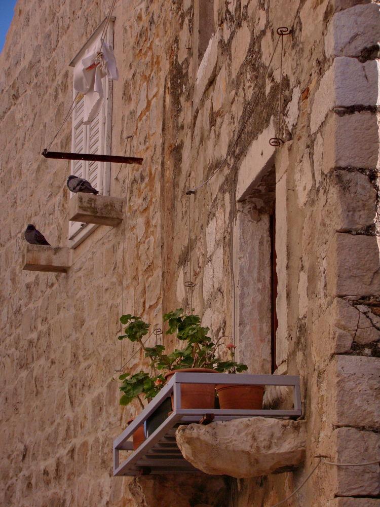 Dubrovnik by Alekdandar Dekanski