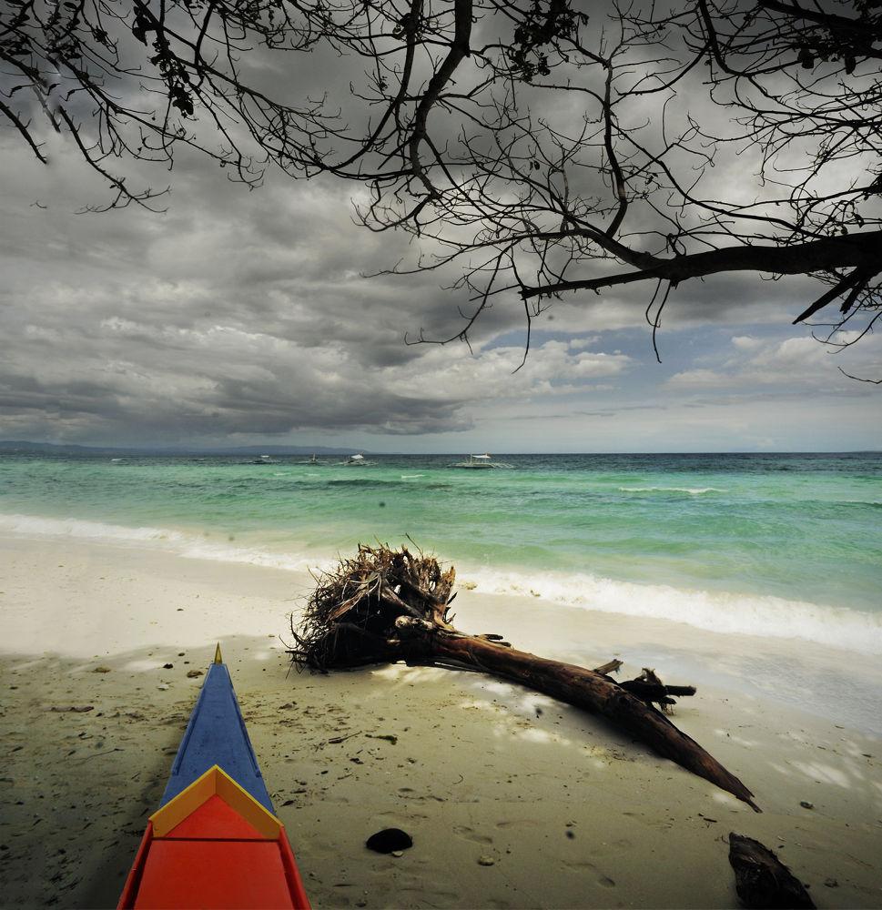Seeking Zen ~ by Rene Araneta