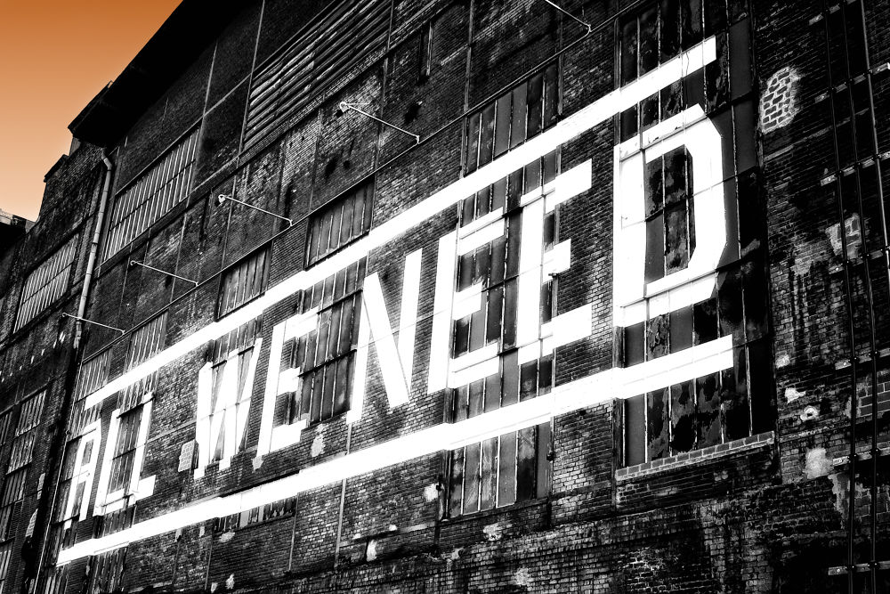 ... all we need by Carlo Scherer
