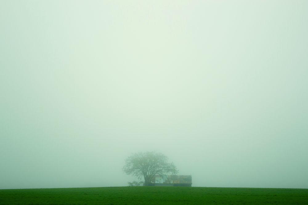 Foggy Field by Hasan Mahmud Tipu