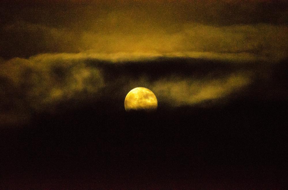 Photo in Nature #sammywongpun #youpic #moon #fredericton