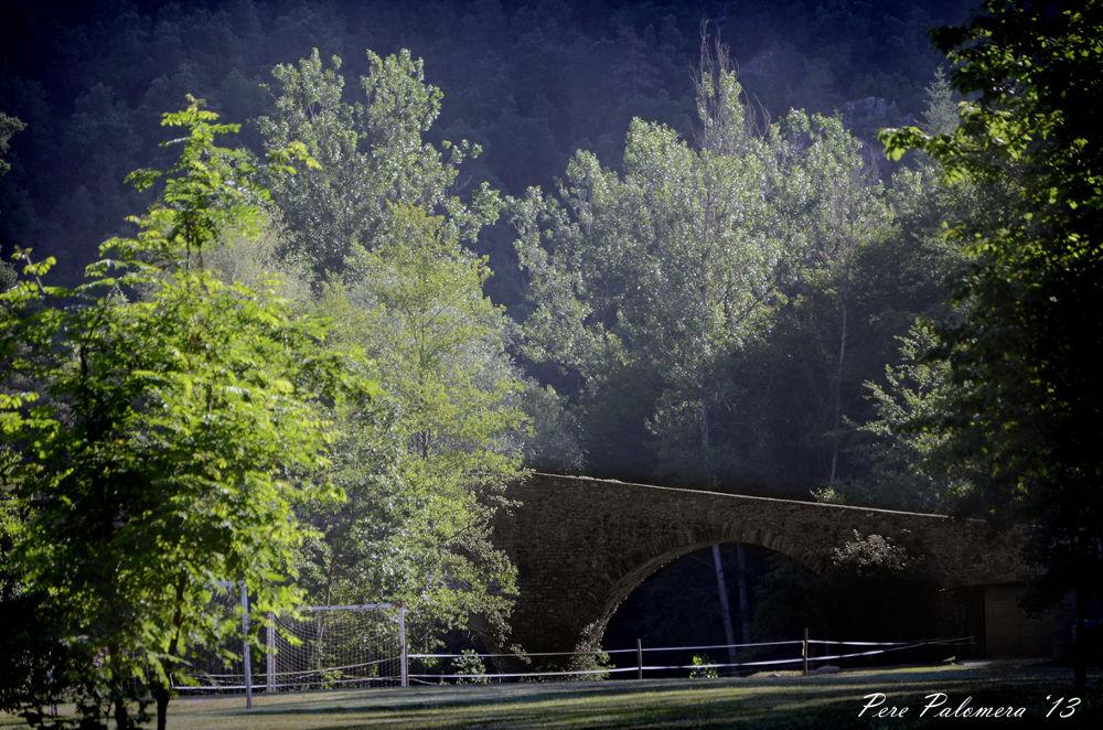 El Pont de Malafogasa. by PerePalomera