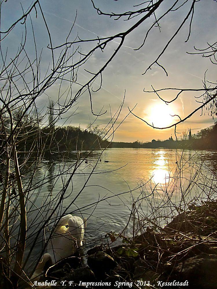 sunset by the river bank of Main , Kesselstadt , Hanau  by shutterbugana