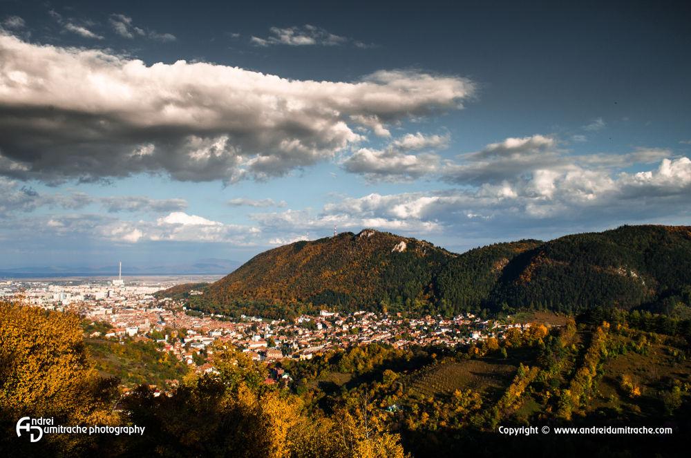 Autumn Landscape by Andrei Dumitrache