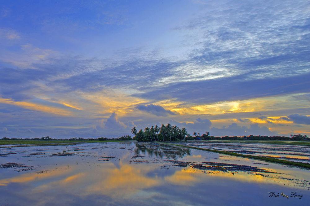 In Memory by Paklang