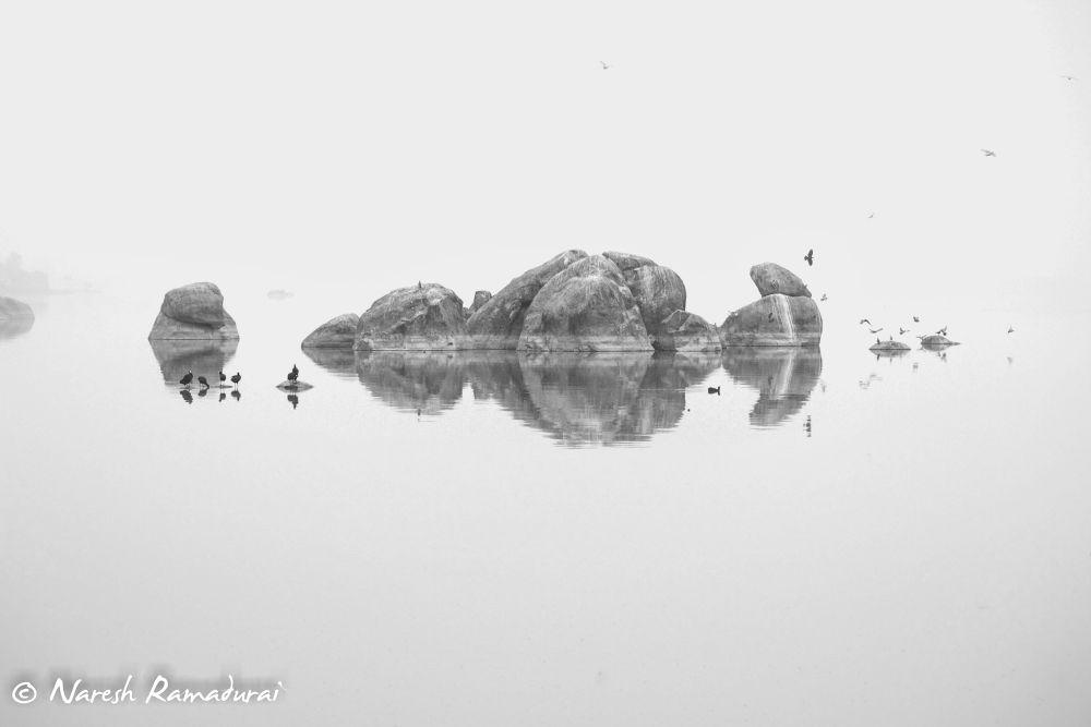 Reflections by nareshramadurai