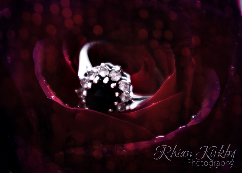 ring o'roses by Rhian Kirkby