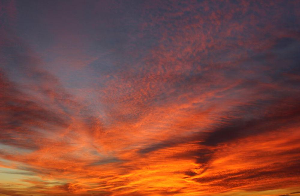 rising day by Romanowicz