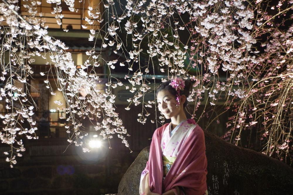 Cherry tree by shinichiinoue9619
