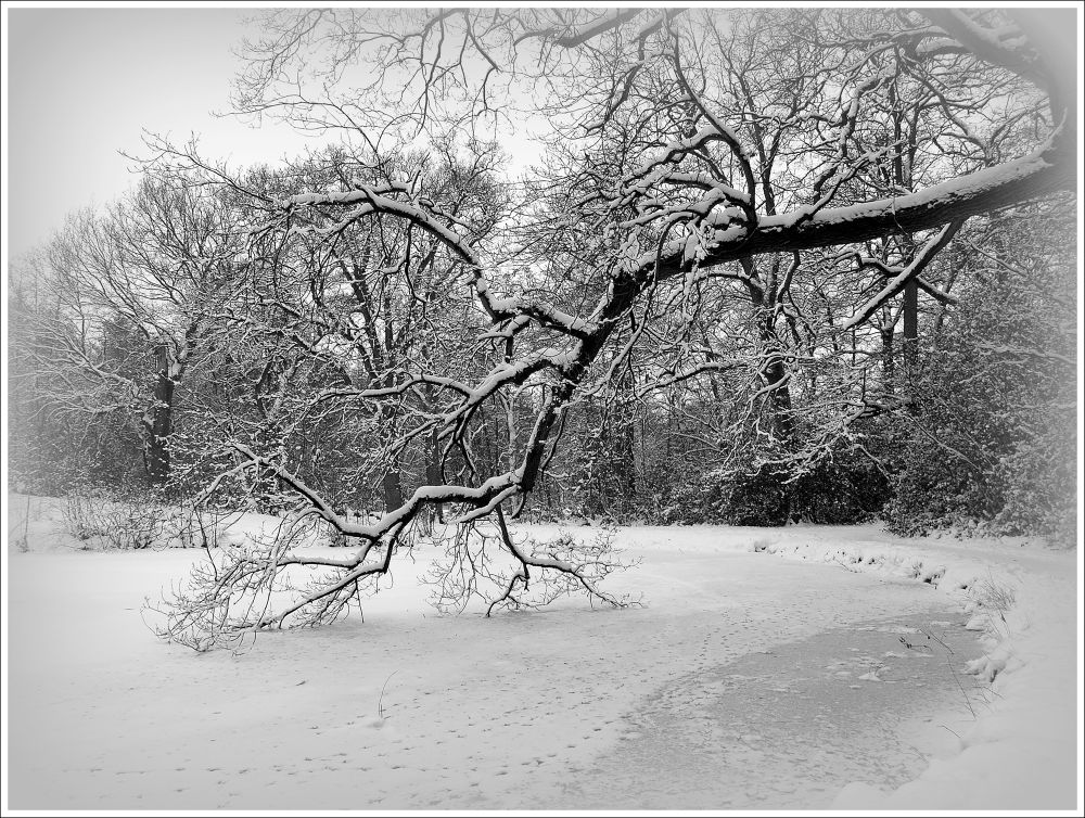Winter in Holland by gezienapomplooman