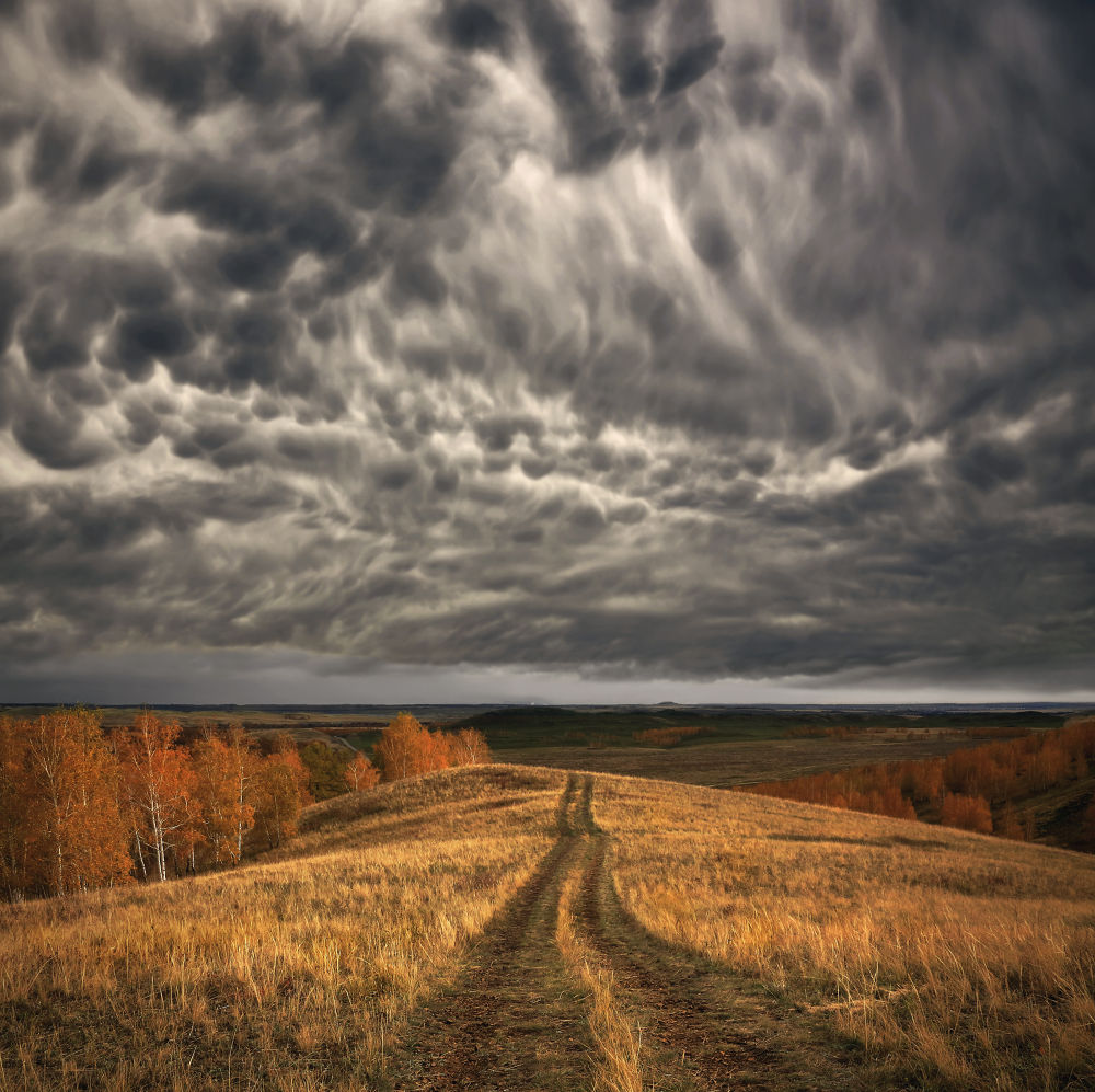 Mammatus clouds by Alexander Sysuev